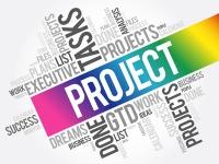 Teil 1 - Die projektorientierte Organisation
